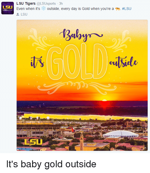 lsu tigers: LSU Tigers  @LSUsports 3h  LSU  Even when it's  outside, every day is Gold when you're a T9. ALSU  LSU  outside  LSU It's baby gold outside