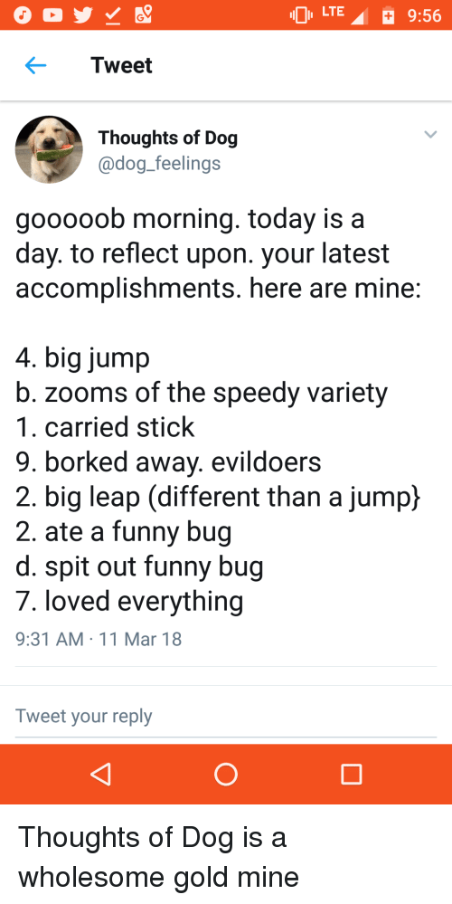 Borked: LTE  9:56  Tweet  Thoughts of Dog  adog feelings  gooooob morning. today is a  day. to reflect upon. your latest  accomplishments. here are mine  4. big jump  b. zooms of the speedy variety  1. carried stick  9. borked away. evildoers  2. big leap (different than a jump}  2. ate a funny bug  d. spit out funny bug  7. loved everything  9:31 AM 11 Mar 18  Tweet your reply <p>Thoughts of Dog is a wholesome gold mine</p>