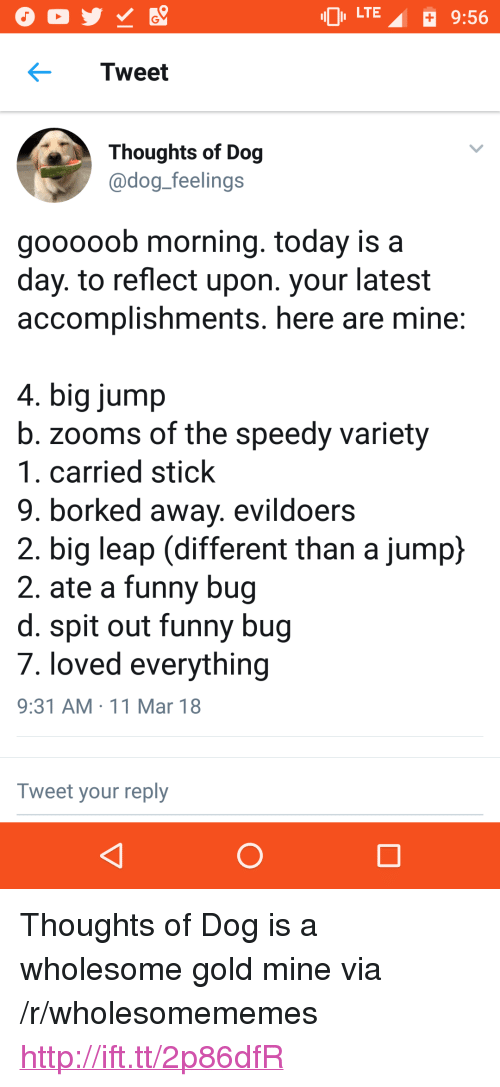 """Borked: LTE  9:56  Tweet  Thoughts of Dog  adog feelings  gooooob morning. today is a  day. to reflect upon. your latest  accomplishments. here are mine  4. big jump  b. zooms of the speedy variety  1. carried stick  9. borked away. evildoers  2. big leap (different than a jump}  2. ate a funny bug  d. spit out funny bug  7. loved everything  9:31 AM 11 Mar 18  Tweet your reply <p>Thoughts of Dog is a wholesome gold mine via /r/wholesomememes <a href=""""http://ift.tt/2p86dfR"""">http://ift.tt/2p86dfR</a></p>"""
