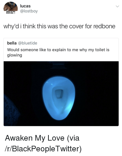 redbone: lucas  @lostboy  BACK TO YOU  071218  why'd i think this was the cover for redbone  bella @bluetide  Would someone like to explain to me why my toilet is  glowing <p>Awaken My Love (via /r/BlackPeopleTwitter)</p>