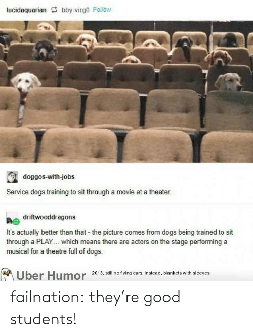 Theatre: lucidaquarian bby-virgo Follow  doggos-with-jobs  Service dogs training to sit through a movie at a theater.  driftwooddragons  It's actually better than that the picture comes from dogs being trained to sit  through a PLAY... which means there are actors on the stage performing a  musical for a theatre full of dogs.  Uber Humor 2013, still no flying cars. Instead, blankets with sleeves. failnation:  they're good students!