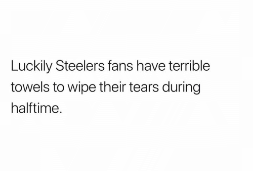 Steelers Fans: Luckily Steelers fans have terrible  towels to wipe their tears during  halftime.