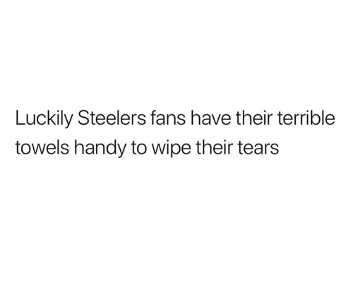 Steelers Fans: Luckily Steelers fans have their terrible  towels handy to wipe their tears