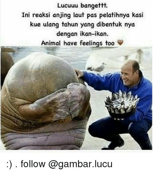 Animals Have Feelings Too
