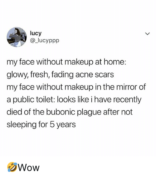 Fresh, Makeup, and Memes: lucy  @_lucyppp  my face without makeup at home:  glowy, fresh, fading acne scars  my face without makeup in the mirror of  a public toilet: looks like i have recently  died of the bubonic plague after not  sleeping for 5 years 🤣Wow