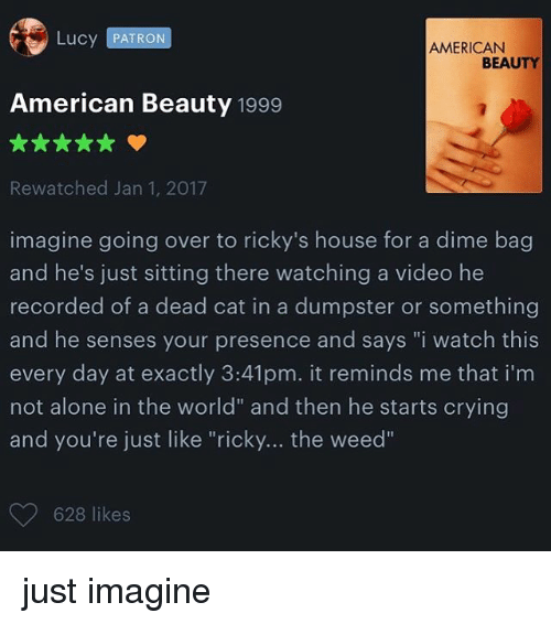 """Dumpstered: Lucy PATRON  AMERICAN  BEAUTY  American Beauty 1999  Rewatched Jan 1, 2017  imagine going over to ricky's house for a dime bag  and he's just sitting there watching a video he  recorded of a dead cat in a dumpster or something  and he senses your presence and says """"i watch this  every day at exactly 3:41pm. it reminds me that im  not alone in the world"""" and then he starts crying  and you're just like """"ricky... the weed""""  628 likes just imagine"""