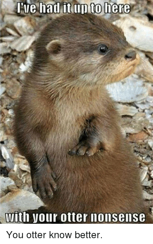 otter nonsense: lue had it up to here  With your otter nonsense You otter know better.