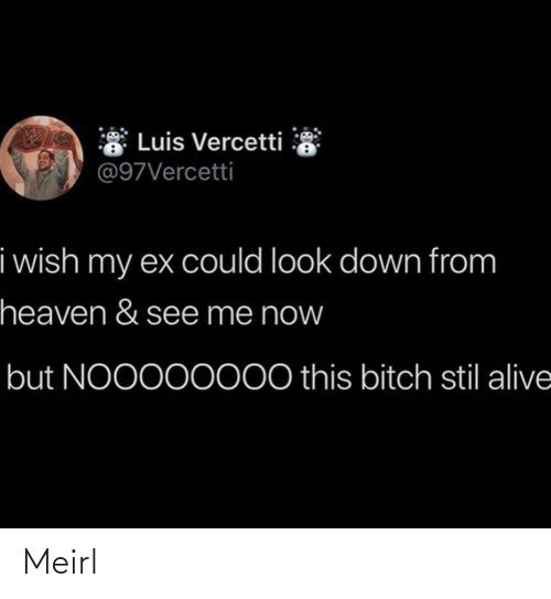 Heaven: * Luis Vercetti  @97Vercetti  i wish my ex could look down from  heaven & see me now  but NOO000000 this bitch stil alive Meirl