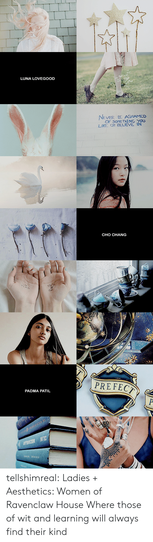 luna lovegood: LUNA LOVEGOOD  EVER ASHAMED  OF SOME TXİNG YOU  LIKE OR BELIEVE IN   CHO CHANG   PADMA PATIL tellshimreal: Ladies + Aesthetics: Women of Ravenclaw House Where those of wit and learning will always find their kind
