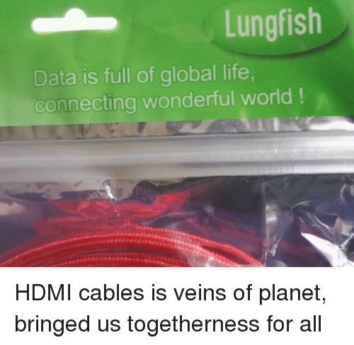 bringed: Lungfish  Data is full of global life  connecting wonderful world! HDMI cables is veins of planet, bringed us togetherness for all