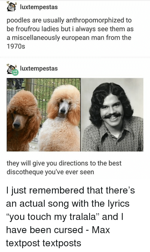 """Memes, Best, and Lyrics: luxtempestas  poodles are usually anthropomorphized to  be froufrou ladies but i always see them as  a miscellaneously european man from the  1970s  luxtempestas  they will give you directions to the best  discotheque you've ever seern I just remembered that there's an actual song with the lyrics """"you touch my tralala"""" and I have been cursed - Max textpost textposts"""