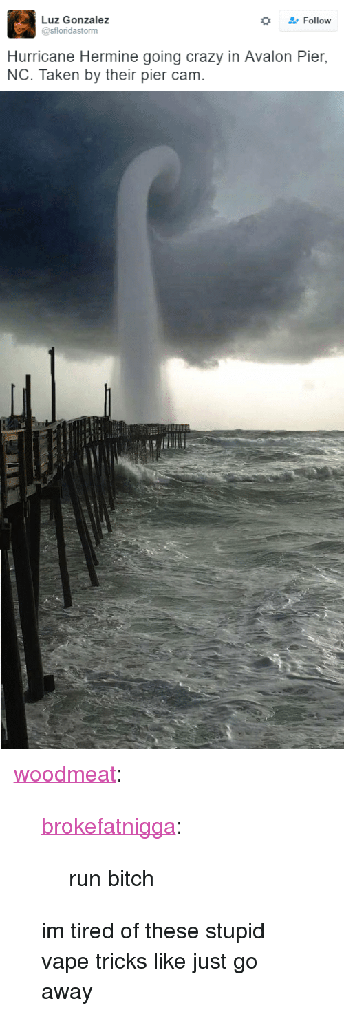 """run bitch: Luz Gonzalez  @sfloridastorm  Follow  Hurricane Hermine going crazy in Avalon Pier,  NC. Taken by their pier cam. <p><a class=""""tumblr_blog"""" href=""""http://woodmeat.tumblr.com/post/149967536276"""" target=""""_blank"""">woodmeat</a>:</p><blockquote> <p><a class=""""tumblr_blog"""" href=""""http://brokefatnigga.tumblr.com/post/149957933401"""" target=""""_blank"""">brokefatnigga</a>:</p> <blockquote> <p>run bitch</p> </blockquote> <p>im tired of these stupid vape tricks like just go away</p> </blockquote>"""