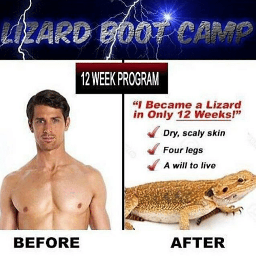 """Programing: LZARD BOOT CAMP  12 WEEK PROGRAM  """"Became a Lizard  in Only 12 Weeks!""""  Dry, scaly skin  Four legs  A will to live  BEFORE  AFTER"""