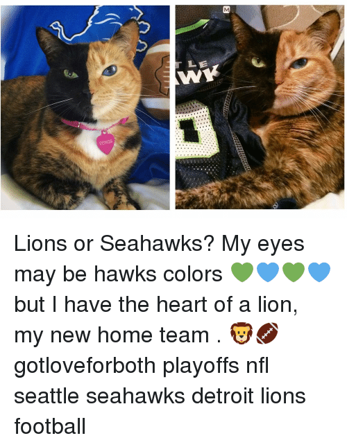 Detroit Lions: M  っ  r LE  W  venus  つA Lions or Seahawks? My eyes may be hawks colors 💚💙💚💙 but I have the heart of a lion, my new home team . 🦁🏈 gotloveforboth playoffs nfl seattle seahawks detroit lions football