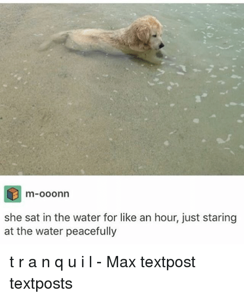 Memes, Water, and 🤖: m-00onn  she sat in the water for like an hour, just staring  at the water peacefully t r a n q u i l - Max textpost textposts