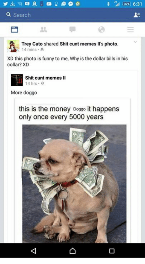 Funny, Meme, and Memes: m 6:31  a Search  Trey Cato shared Shit cunt memes lis photo.  14 mins  XD this photo is funny to me, Why is the dollar bills in his  collar? XD  Shit cunt memes ll  14 hrs.  More doggo  this is the money Doggo it happens  only once every 5000 years