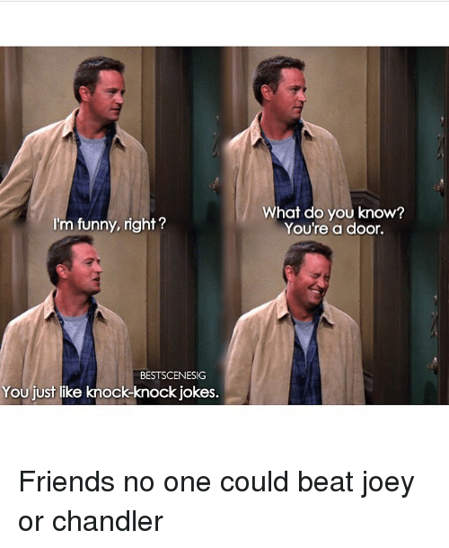 Knock Knock Jokes: 'm funny, right?  BESTSCENESIG  You just like knock knock jokes.  What do you know?  You're a door. Friends no one could beat joey or chandler