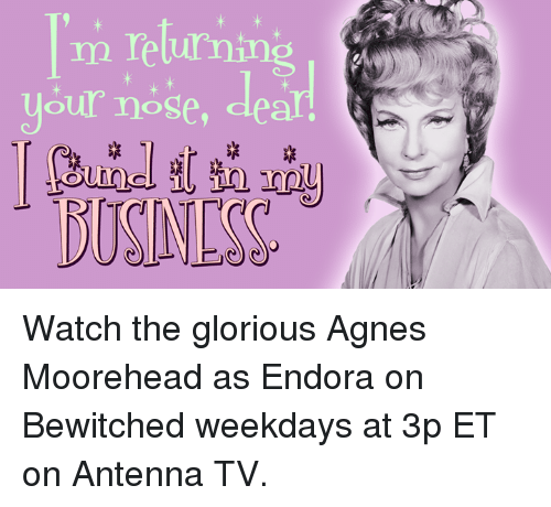 Bewitched: m returning  your nose Watch the glorious Agnes Moorehead as Endora on Bewitched weekdays at 3p ET on Antenna TV.