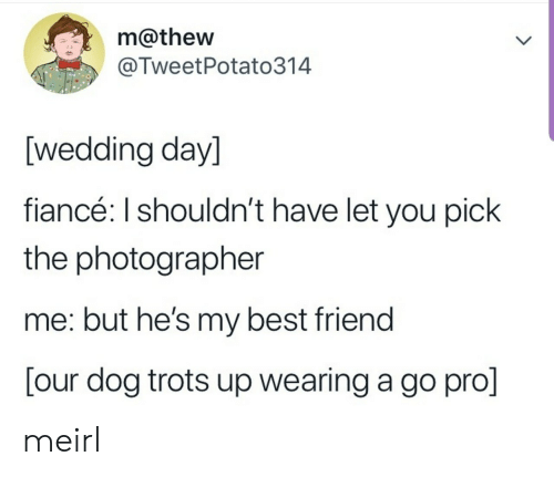 Fiance: m@thew  @TweetPotato314  [wedding day]  fiancé: I shouldn't have let you pick  the photographer  me: but he's my best friend  [our dog trots up wearing a go pro] meirl
