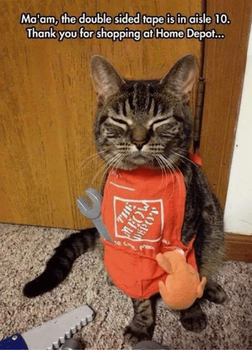 Shopping, Grumpy Cat, and Thank You: Ma'am, the double sided tape is in aisle 10.  Thank you for shopping at Home Depot