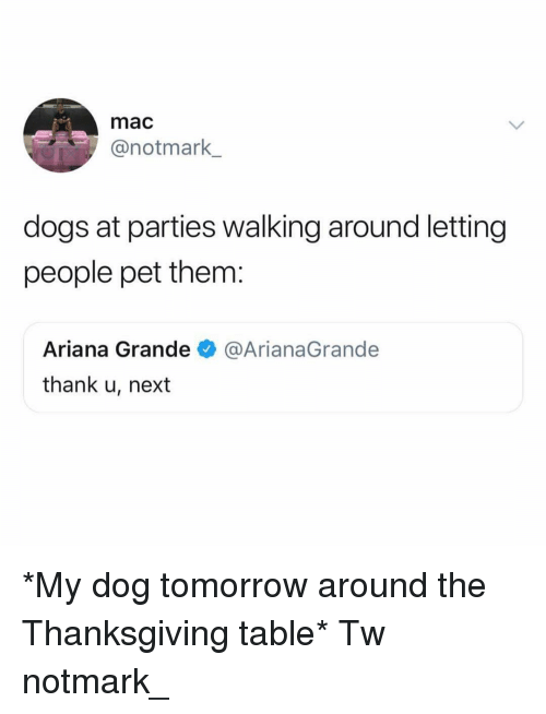 arianagrande: mac  @notmark  dogs at parties walking around letting  people pet them:  Ariana Grande@ArianaGrande  thank u, next *My dog tomorrow around the Thanksgiving table* Tw notmark_