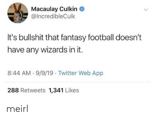 Fantasy football: Macaulay Culkin  @IncredibleCulk  It's bullshit that fantasy football doesn't  have any wizards in it  8:44 AM 9/9/19 Twitter Web App  288 Retweets 1,341 Likes meirl