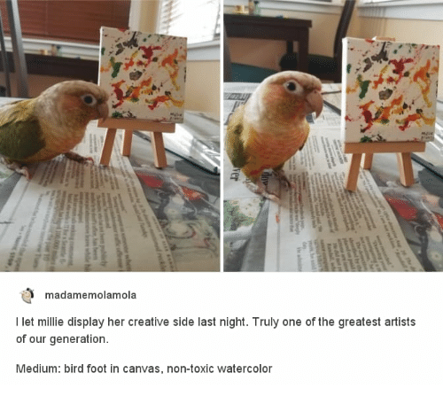 Canvas, Her, and Medium: madamemolamola  I let millie display her creative side last night. Truly one of the greatest artists  of our generation  Medium: bird foot in canvas, non-toxic watercolor