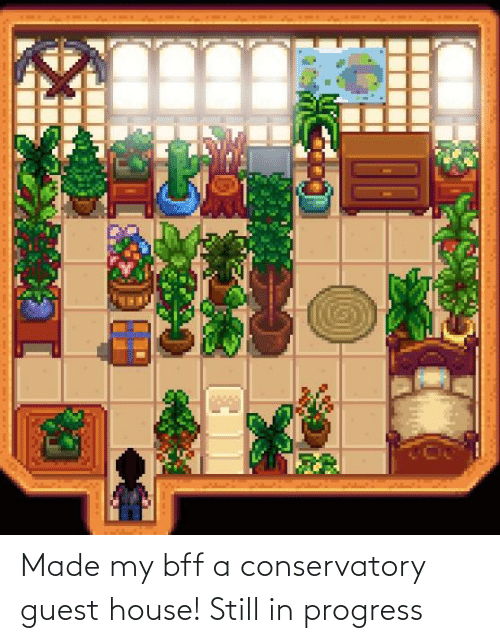 Guest: Made my bff a conservatory guest house! Still in progress