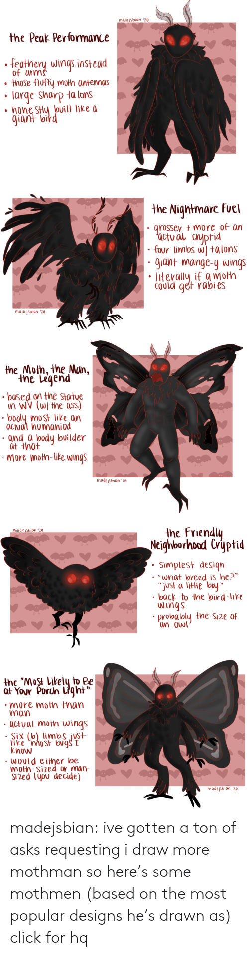 "the man: madejsbian '20  the Peak Performance  feathery wings instead  of arms  • those Auffy moth antennas  large sharp ta lons  • hone SHy bvilt like a  giant bird   the Nightmare Fuel  grosser + more of an  'actual cnyptid  four limbs w| talons  giant mange-y wings  Could get rabi es  madejsbian '20   the Moth, the Man,  the Legend  • based on the Statue  in WV (W/ the ass)  body most like an  actual humaniod  · and a body builder  at that  ·more moth-like wings  madejsbian '20   the Friendly  Neighborhood Cryptid  madejsbian '20  Simplest design  • ""what breed is he?™  ""just a litte boy""  • back to the bird-like  wings  probably the Size of  'an owl   the ""Most Likely to Be  at Your Porch Light""  •more moth than  man  · actual moth wings  · Six (6) limbs just  like 'mo st bug I  know  • would either be  moth-sized or man-  Sized (you decide)  madejsbian '20 madejsbian: ive gotten a ton of asks requesting i draw more mothman so here's some mothmen (based on the most popular designs he's drawn as)
