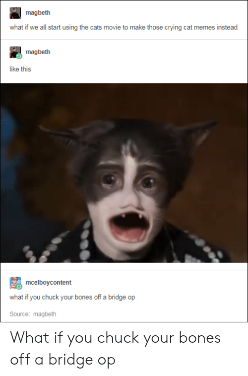 crying cat: magbeth  what if we all start using the cats movie to make those crying cat memes instead  magbeth  like this  mcelboycontent  what if you chuck your bones off a bridge op  Source: magbeth What if you chuck your bones off a bridge op