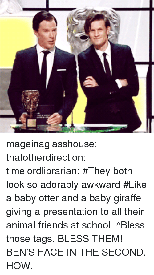 baby giraffe: mageinaglasshouse:  thatotherdirection:  timelordlibrarian:  #They both look so adorably awkward #Like a baby otter and a baby giraffe giving a presentation to all their animal friends at school   ^Bless those tags. BLESS THEM!  BEN'S FACE IN THE SECOND. HOW.