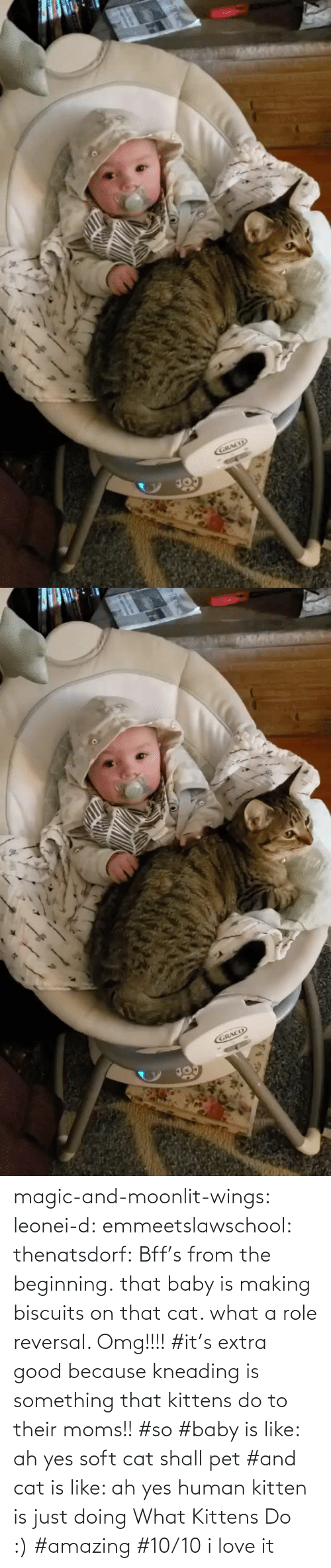 pet: magic-and-moonlit-wings: leonei-d:  emmeetslawschool:  thenatsdorf: Bff's from the beginning. that baby is making biscuits on that cat. what a role reversal.    Omg!!!!     #it's extra good because kneading is something that kittens do to their moms!! #so #baby is like: ah yes soft cat shall pet #and cat is like: ah yes human kitten is just doing What Kittens Do :) #amazing #10/10 i love it