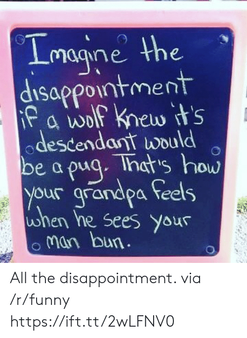 Man Bun: magine he  Sappo1ntmern  odescendant would  be a puq. That's how  your grandpa feels  uwhen he sees your  man bun All the disappointment. via /r/funny https://ift.tt/2wLFNV0