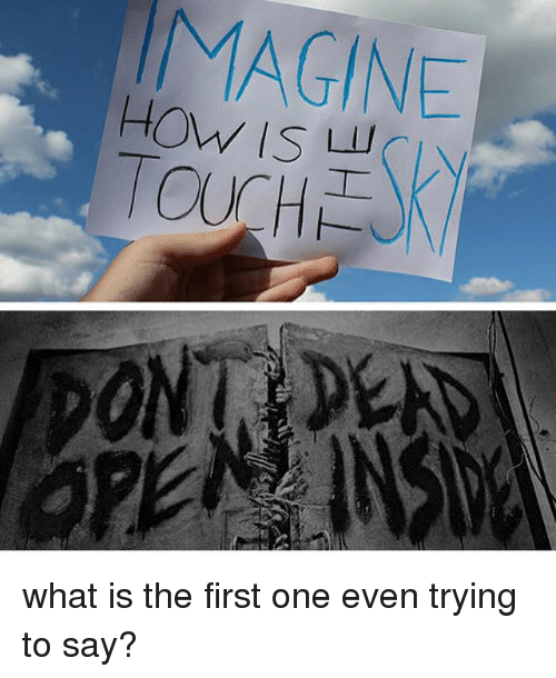 What Is The First: MAGINE  TOUCH what is the first one even trying to say?