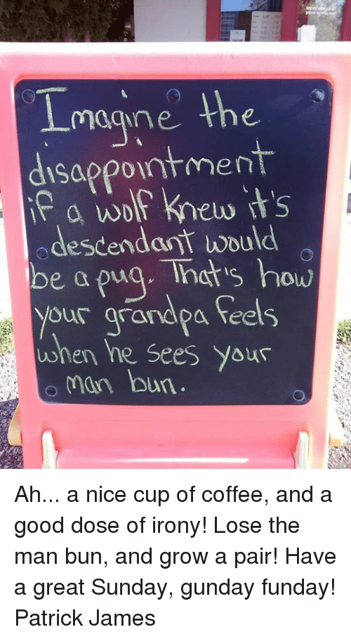 Man Bun: magne the  disappointment  a wolf knew its  odescendant would  be a puq. Tnats how  your arandpa feels  when he Sees Yous  man bun Ah... a nice cup of coffee, and a good dose of irony! Lose the man bun, and grow a pair! Have a great Sunday, gunday funday! Patrick James
