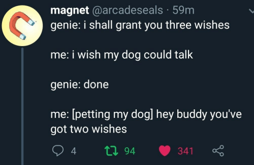 magnet: magnet @arcadeseals 59m  genie: i shall grant you three wishes  me: i wish my dog could talk  genie: done  me: [petting my dogl hey buddy you've  got two wishes  ti94  341