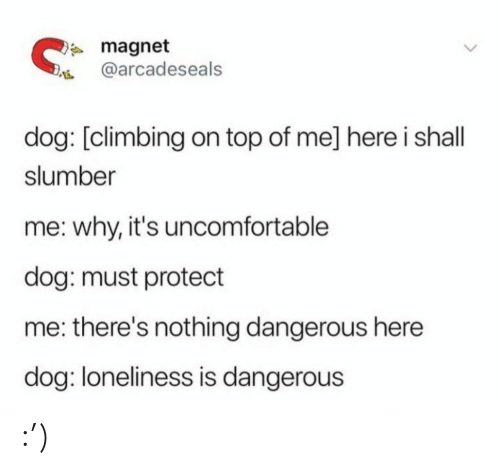 Climbing: * magnet  @arcadeseals  dog: [climbing on top of me] here i shall  slumber  me: why, it's uncomfortable  dog: must protect  me: there's nothing dangerous here  dog: loneliness is dangerous :')