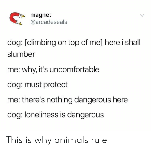 Climbing: magnet  @arcadeseals  dog: [climbing on top of me] here i shall  slumber  me: why, it's uncomfortable  dog: must protect  me: there's nothing dangerous here  dog: loneliness is dangerous This is why animals rule