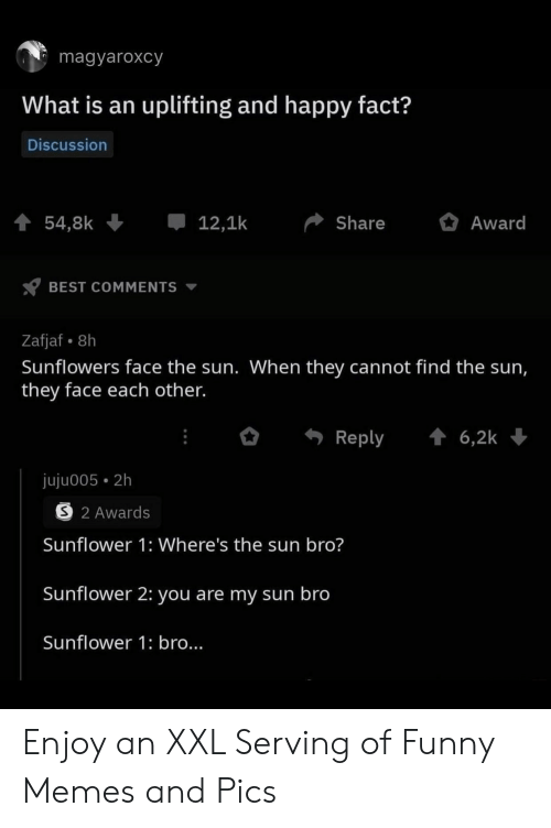 Sun Bro: magyaroxcy  What is an uplifting and happy fact?  Discussion  t 54,8k  12,1k  Award  Share  BEST COMMENTS  Zafjaf 8h  Sunflowers face the sun. When they cannot find the sun,  they face each other.  t6,2k  Reply  juju005 2h  S 2 Awards  Sunflower 1: Where's the sun bro?  Sunflower 2: you are my sun bro  Sunflower 1: bro... Enjoy an XXL Serving of Funny Memes and Pics