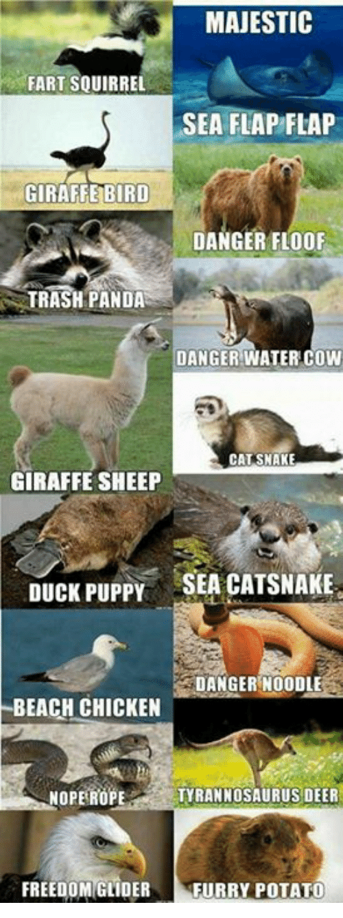 flapping: MAJESTIC  FART SQUIRREL  SEA FLAP FLAP  GIRAFFE BIRD  TRASH PANDA  GIRAFFE SHEEP  CHICKEN  DANGER FLOoF  DANGER WATER COW  CAT SNAKE  DUCK PUPPY  SEA CATSNAKE  DANGER NOODLE  NOPELROPE  TYRANNOSAURUS DEER  FREEDOM GLIDER  FURRY POTATO