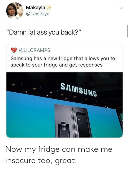"""Makayla: Makayla  @LayDaye  """"Damn fat ass you back?""""  @LILCRAMPS  Samsung has a new fridge that allows you to  speak to your fridge and get responses  SAMSUN6 Now my fridge can make me insecure too, great!"""