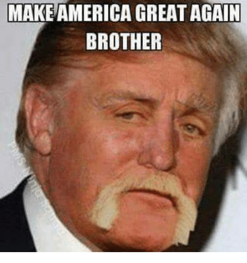 make-america-great-again-brother-3136026