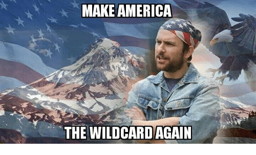 America, Memes, and 🤖: MAKE AMERICA  THE WILDCARD AGAIN
