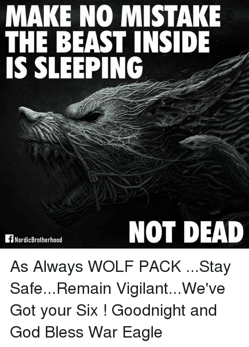 Got Your Six: MAKE NO MISTAKE  THE BEAST INSIDE  IS SLEEPING  NOT DEAD  Nordic Brotherhood As Always WOLF PACK ...Stay Safe...Remain Vigilant...We've Got your Six  ! Goodnight and God Bless                                       War Eagle