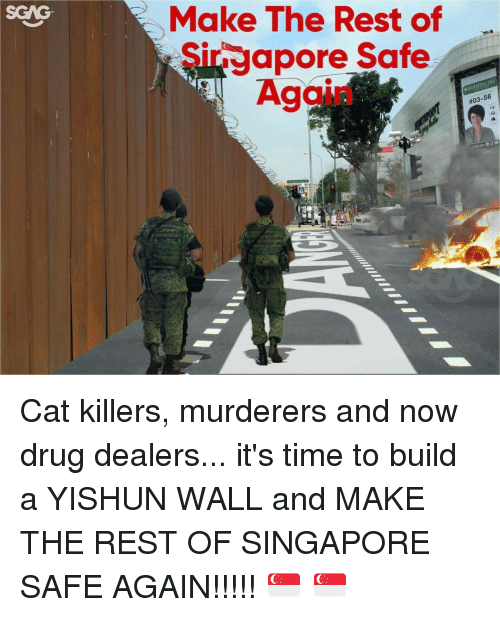 Memes, Siri, and 🤖: Make The Rest of  Siri apore Safe  BELING  H Cat killers, murderers and now drug dealers... it's time to build a YISHUN WALL and MAKE THE REST OF SINGAPORE SAFE AGAIN!!!!! 🇸🇬 🇸🇬