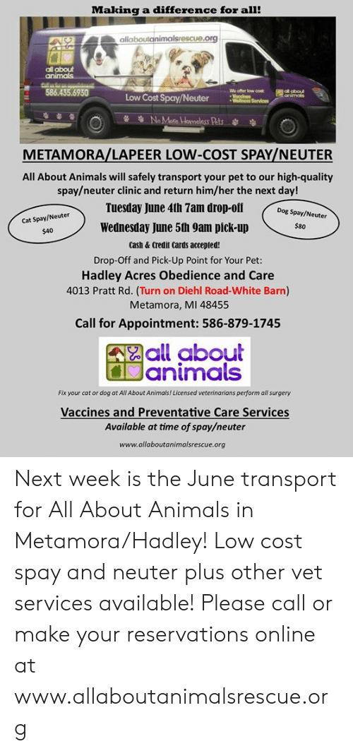 cat-or-dog: Making a difference for all!  allaboutainimalsrescue.org  all about  586.435.6930  Wo offer low cost  Low Cost Spay/NeuterSe  METAMORA/LAPEER LOW-COST SPAY/NEUTER  All About Animals will safely transport your pet to our high-quality  spay/neuter clinic and return him/her the next day!  Tuesday June 4th 7am drop-ofi Dog s  Cat Spay/Neuter  $40  Wednesday June 5th 9am pick-up  $80  Cash & Credit Cards accepted!  Drop-Off and Pick-Up Point for Your Pet:  Hadley Acres Obedience and Care  4013 Pratt Rd. (Turn on Diehl Road-White Barn)  Metamora, MI 48455  Call for Appointment: 586-879-1745  all about  animals  Fix your cat or dog at All About Animals! Licensed veterinarians perform all surgery  Vaccines and Preventative Care Services  Available at time of spay/neuter  www.allaboutanimalsrescue.org Next week is the June transport for All About Animals in Metamora/Hadley!  Low cost spay and neuter plus other vet services available!    Please call or make your reservations online at www.allaboutanimalsrescue.org