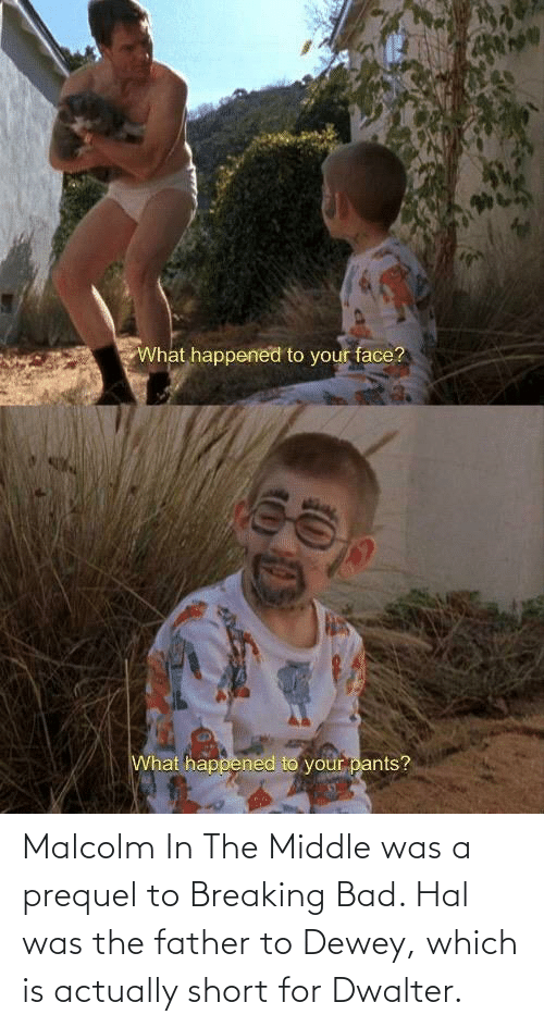 hal: Malcolm In The Middle was a prequel to Breaking Bad. Hal was the father to Dewey, which is actually short for Dwalter.