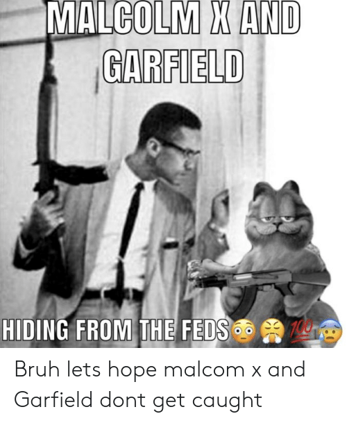 malcom x: MALCOLM X AND  GARFIELD  HIDING FROM THE FEDS Bruh lets hope malcom x and Garfield dont get caught