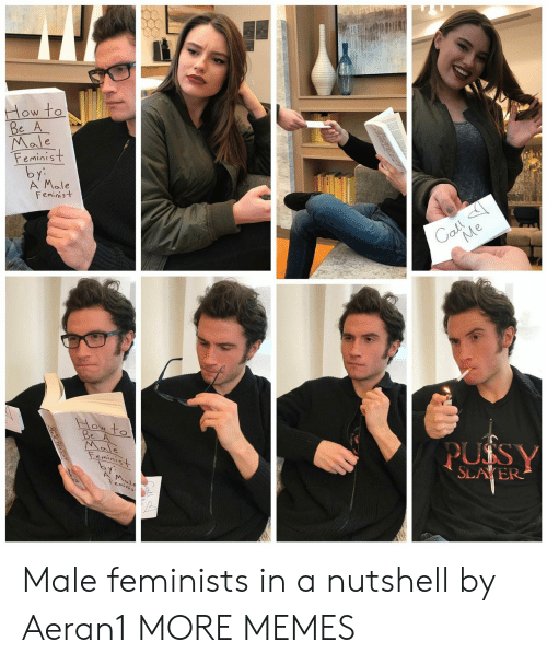Feminists: Male  eminist  A' Male  Feminist  ON TO  SLAYER Male feminists in a nutshell by Aeran1 MORE MEMES