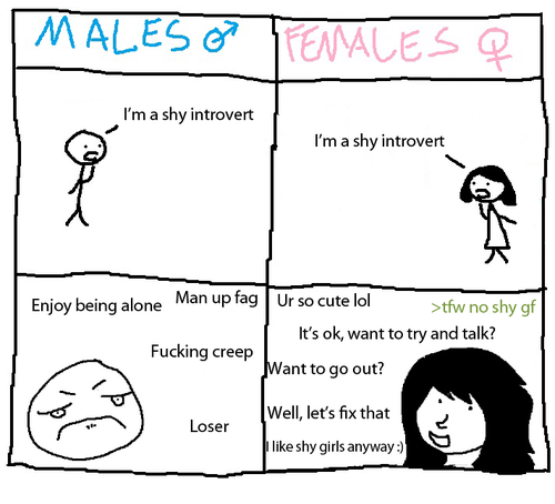 Being Alone, Cute, and Fucking: MALES  TEMALES  I'm a shy introvert  I'm a shy introvert  Enjoy being alone  Man up fag Ur so cute lol  >tfw no shy gf  It's ok, want to try and talk?  Fucking creep  Want to go out?  Well, let's fix that  Loser  like shy girls anyway)